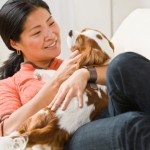 Pet Burials and Cremations