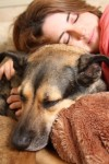 The Role of Animals in Grief and Bereavement