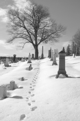 Funeral Planning: Winter Burials