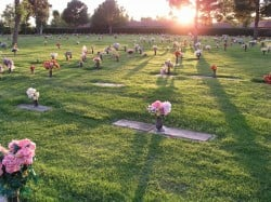 How Many Cemetery Plots Should I Buy?