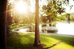 Benefits of an Outdoor Funeral