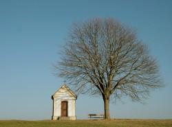 Establishing a Family Cemetery