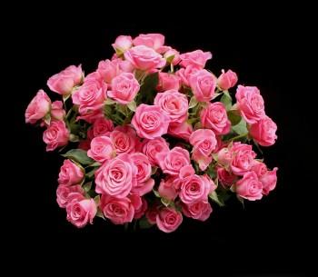 Funeral Flower FAQ