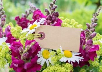 What to Write on Funeral Flowers