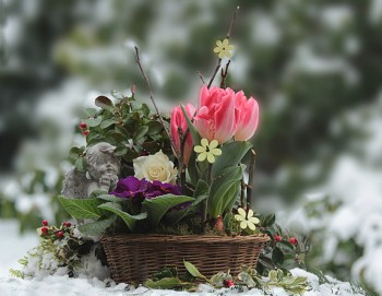 What Kind of Flowers are Appropriate to Order for a Grave?