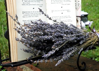Poetry to Read at a Funeral