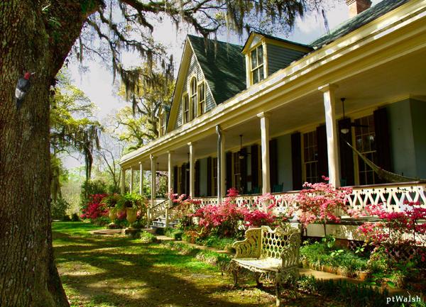 Funeral Homes Near Zachary Louisiana