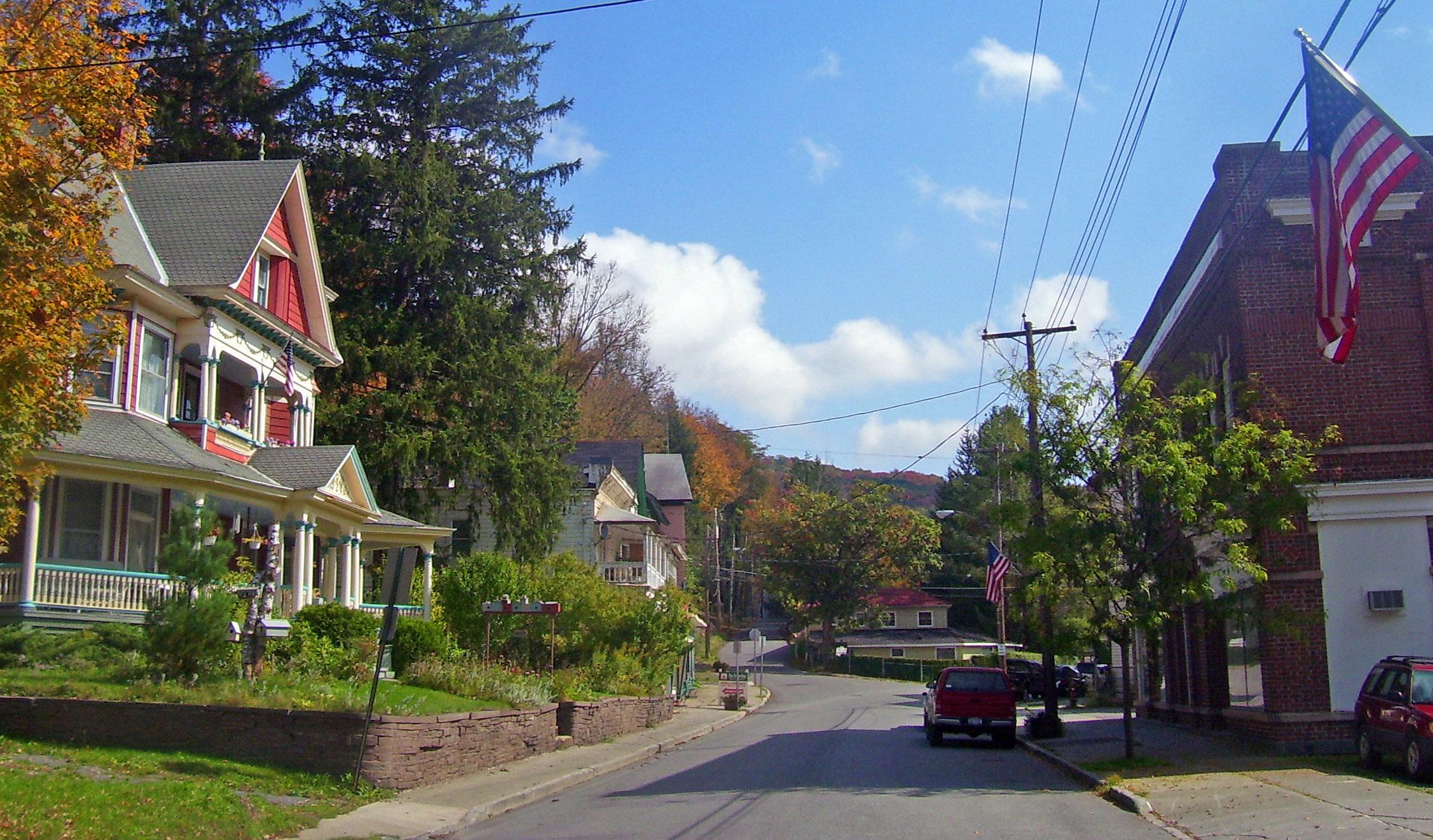 Fleischmanns City In New York