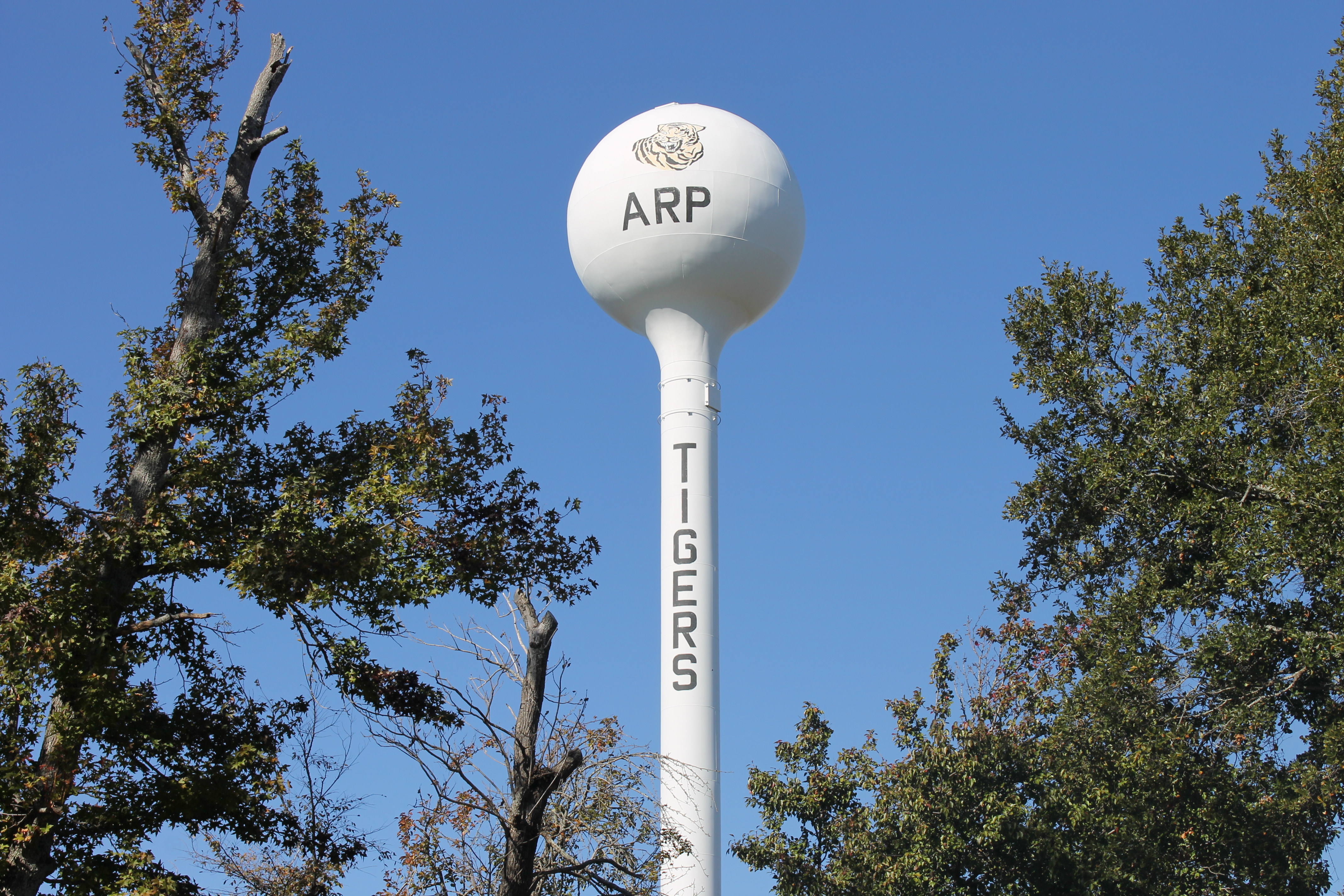 Arp Funeral Homes, funeral services & flowers in Texas