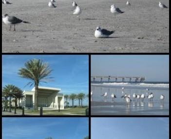 City Of Jax Beach Utilities