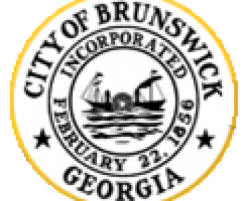 Seal for Brunswick