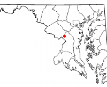 Location of Adelphi, Maryland