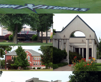 Clockwise from top: The Northwest Arkansas Naturals playing in Arvest Ballpark, the Shiloh Museum of Ozark History, Emma Avenue, Old Springdale High School, Tyson Foods World Headquarters