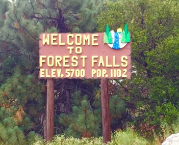 View of Forest Falls
