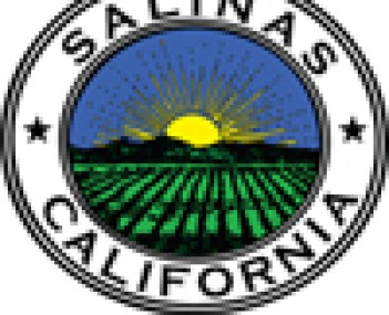 Seal for Salinas