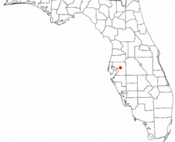 Location of Brandon, Florida