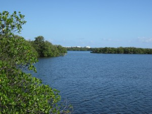 Lake Worth cremation planning