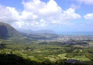Kaneohe cremation planning