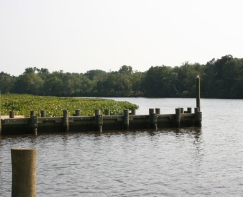 The Choptank River in July 2008