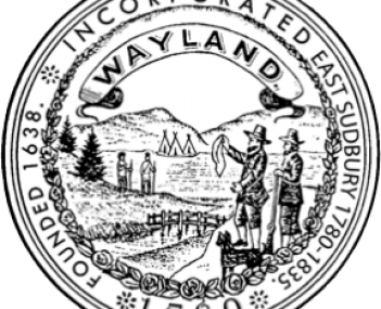 Seal for Wayland