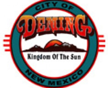 Seal for Deming