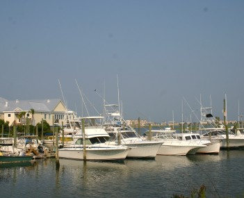 Skyline view of Murrells Inlet