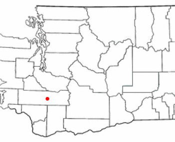 Location of Morton, Washington